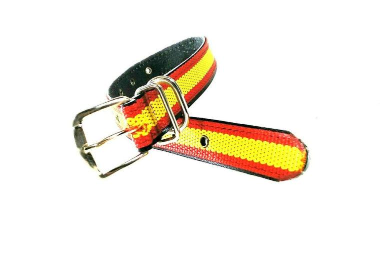 Collar de perro España nylon