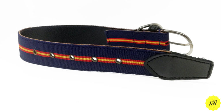 collar de perro color azul de España